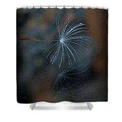 Shower Curtain featuring the photograph Echo... by Marija Djedovic