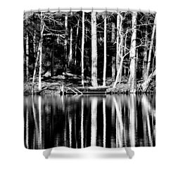 Echoing Trees Shower Curtain