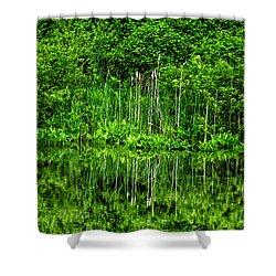 Shower Curtain featuring the photograph Eden 38 Oil by Mark Myhaver