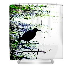 Edgar Allan Poe's Raven On The Edge Of Oblivion By Ron Tackett Shower Curtain