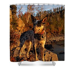 Shower Curtain featuring the photograph Edge Of Glory by James Peterson