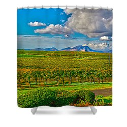 Edna Wineries Ca Shower Curtain by Richard J Cassato