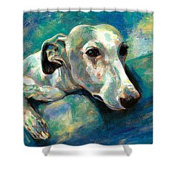 Effects Of Gravity 1 Shower Curtain by Derrick Higgins