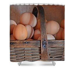 Egg Basket Shower Curtain by Mary Carol Story