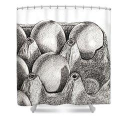 Eggs In Carton  Shower Curtain