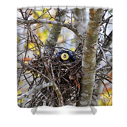Eggstraordinary Shower Curtain by Al Powell Photography USA