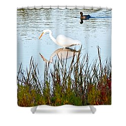 Shower Curtain featuring the photograph Egret And Coot In Autumn by Kate Brown