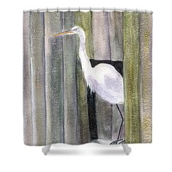 Egret At John's Pass Shower Curtain by Mickey Krause