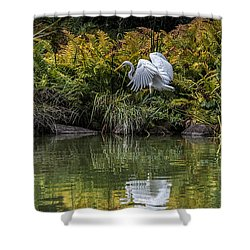 Shower Curtain featuring the photograph Egret At The Lake by Chris Lord