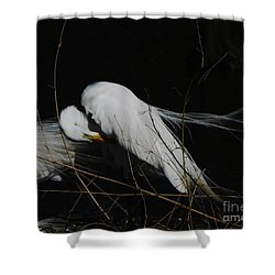 Egret Bird City At Avery Island Louisiana Shower Curtain