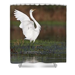 Egret Dancing Shower Curtain