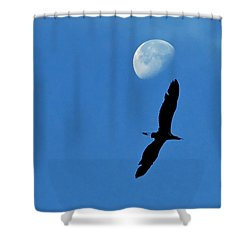 Shower Curtain featuring the photograph Egret Flight by Charlotte Schafer