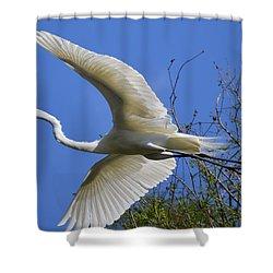 Egret Flying Shower Curtain