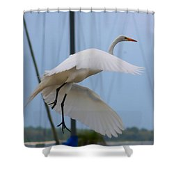 Egret In Flight Shower Curtain by Debra Forand