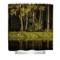 Egret On Caddo Lake Shower Curtain