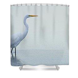 Egret Stance Shower Curtain by Karol Livote