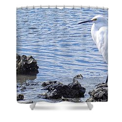 Egret Standing Perfectly Still Shower Curtain
