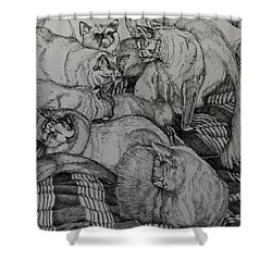 Eight Is Enough Shower Curtain by Janet Felts