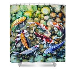 Eight Koi Fish Playing With Bubbles Shower Curtain by Zaira Dzhaubaeva