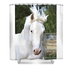 El Padrone Shower Curtain