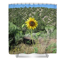 Elated Sunflower Shower Curtain