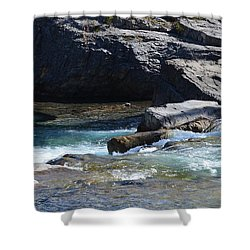Elbow Falls Landscape Shower Curtain by Cheryl Miller