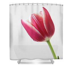 Shower Curtain featuring the photograph Elegance by Anita Oakley