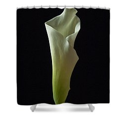 Elegance Calla Lily Shower Curtain