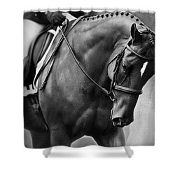 Elegance - Dressage Horse Shower Curtain