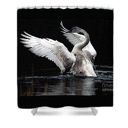 Elegance In Motion 2 Shower Curtain