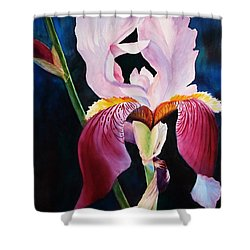 Elegance Shower Curtain by Marilyn Jacobson