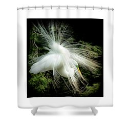 Elegance Of Creation Shower Curtain by Karen Wiles
