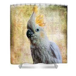 Elegant Lady Shower Curtain by Lois Bryan