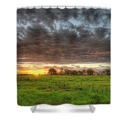 Elements Of A Waimea Sunset Shower Curtain