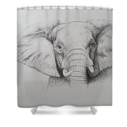 Elephant Shower Curtain by Ele Grafton