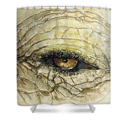 Shower Curtain featuring the painting Elephant Eye by Bernadette Krupa