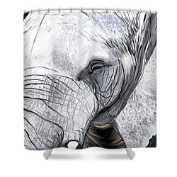Shower Curtain featuring the painting Elephant II by Jeanne Fischer
