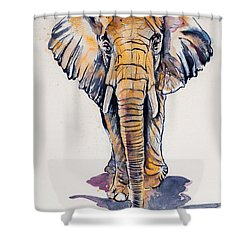 Elephant In Gold Shower Curtain by Kovacs Anna Brigitta