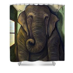 Elephant In The Room Shower Curtain