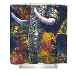 Elephant Shower Curtain by Kd Neeley