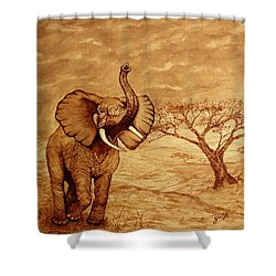 Shower Curtain featuring the painting Elephant Majesty Original Coffee Painting by Georgeta  Blanaru