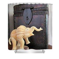 Elephant With Elephant Box Shower Curtain