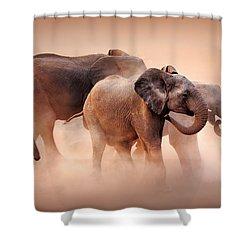 Elephants In Dust Shower Curtain by Johan Swanepoel