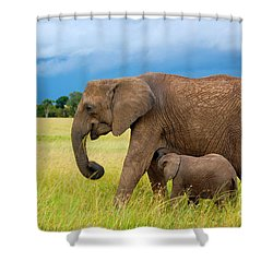 Elephants In Masai Mara Shower Curtain by Charuhas Images