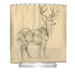 Shower Curtain featuring the drawing Elk by Mary Ellen Anderson