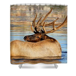 Elk Velveteen  Shower Curtain