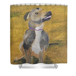 Shower Curtain featuring the painting Ella by Pamela  Meredith