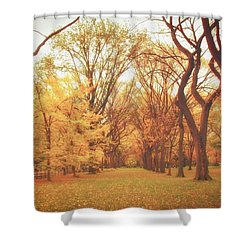 Elm Trees - Autumn - Central Park Shower Curtain by Vivienne Gucwa