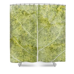 Eloquent Shower Curtain by Brett Pfister