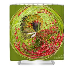 Emberglow Orb Shower Curtain by Anne Gilbert